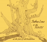 Joshua Lowe & the Juncos - At the Feet of Old Bristlecone - cover image
